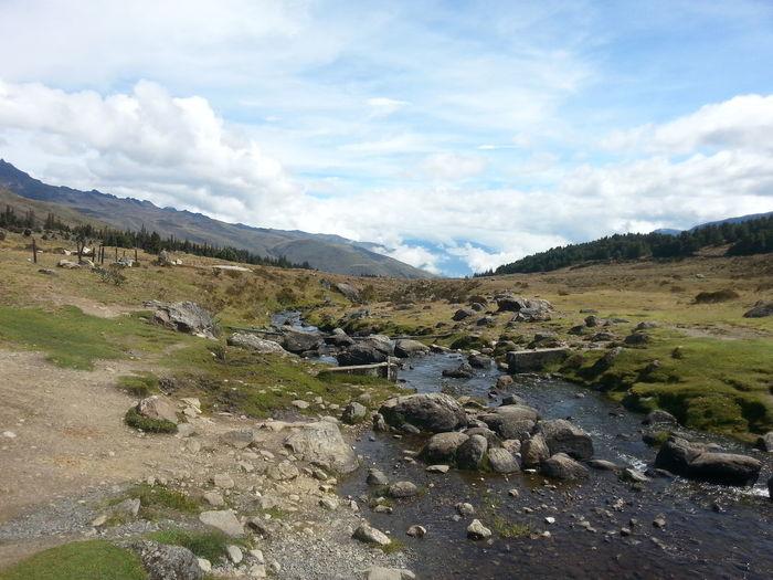 Creek coming