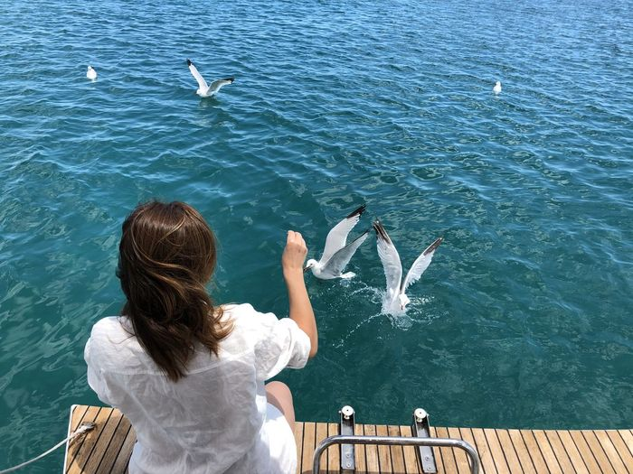 Rear view of woman with seagulls on sea