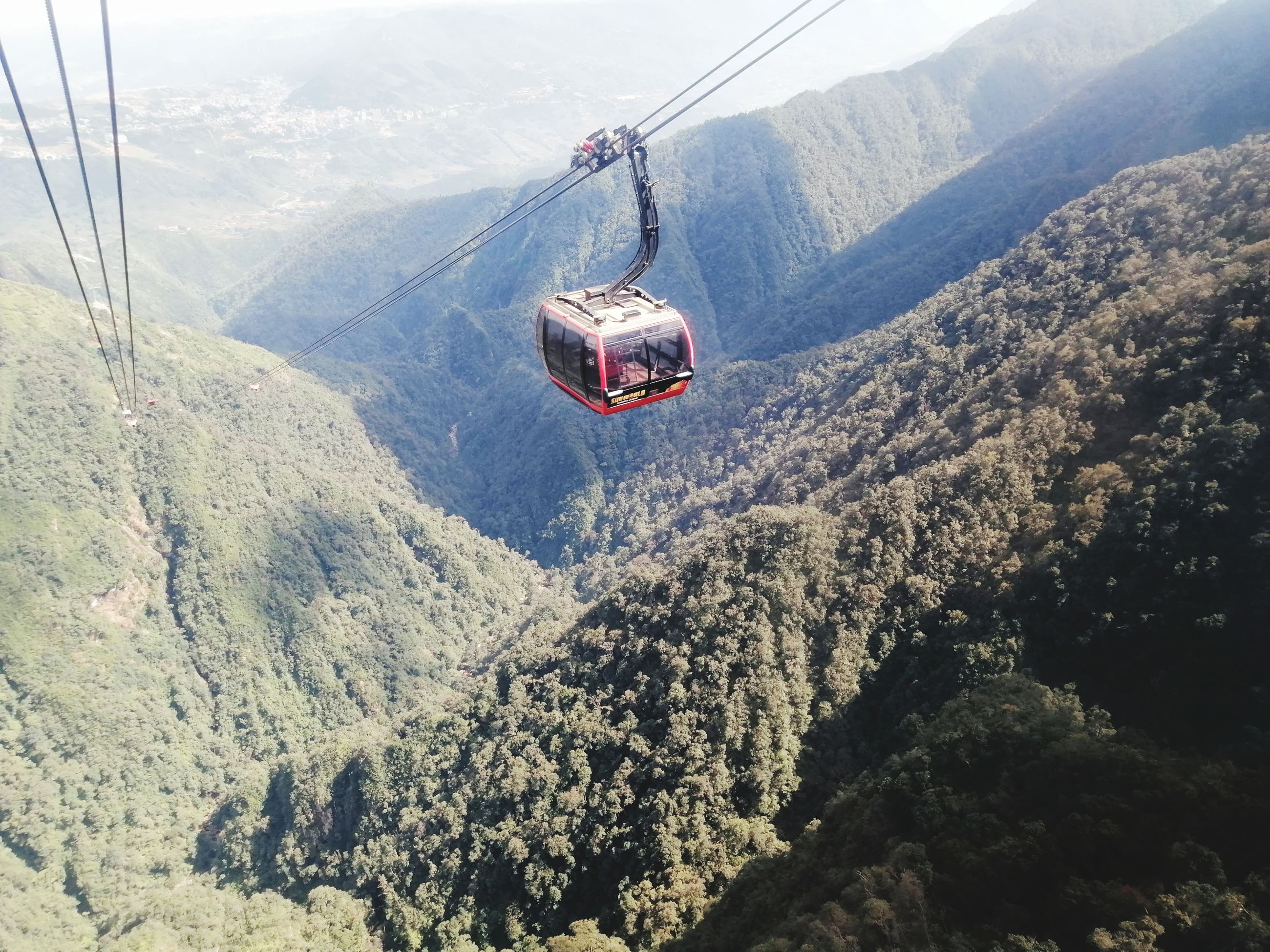 mountain, overhead cable car, cable car, transportation, scenics - nature, day, beauty in nature, mountain range, nature, tree, cable, mode of transportation, ski lift, non-urban scene, mid-air, landscape, plant, tranquil scene, travel, environment, outdoors, no people