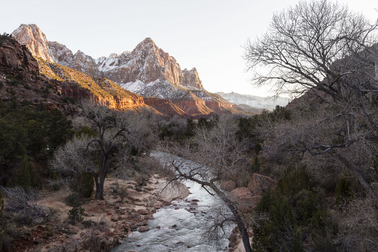 Beautiful sunny horizontal sunset view of the Virgin River curving between banks and mountains in Zion National Park, southern Utah Tranquil Scene Scenics - Nature Beauty In Nature Mountain Water Landscape Mountain Range Cold Temperature Outdoors Flowing Water Mountain Peak Virgin River Zion National Park Southern Utah  Sunset Curve Winter Snow Bare Branches Peaks Bare Tree Tranquility