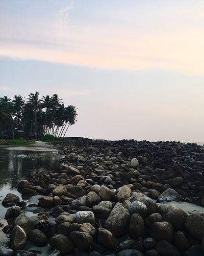 A beautiful evening by the sea. Pebble Beach Nature Tranquil Scene Beauty In Nature Sea Sunset Cloud - Sky Water Pebble Beach Sky Rock - Object No People Tranquility Outdoors Palm Tree Scenics Tree Day First Eyeem Photo EyeEmNewHere