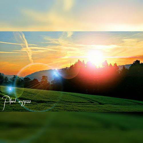 Sunset Sun Sunbeam Lens Flare Dramatic Sky Cloud - Sky No People Nature Summer Beauty In Nature Landscape Sunlight Fields Of Green Germany🇩🇪 Green Color Outdoors Grass Cereal Plant Field Velbert Velbert Neviges