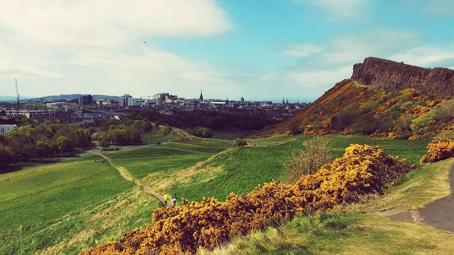 Edinburgh Rural Scene Landscape No People Field Cloud - Sky Hill Nature Outdoors Day Tree Sky Beauty In Nature Freshness Scotland Travel Destinations City Edinburgh Edinburgh, Scotland Cityscape History Arthurs Seat Arthur's Seat Agriculture Crop  Growth