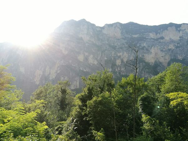 Sun Behind The Mountain Natura Raggi Di Sole Trees And Sky Trees Italy Landscape Italia Italy Beatiful Nature