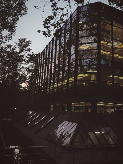 Architecture Built Structure Building Exterior No People Sky Day University Library Glass Reflection Studying Sunset Trees Tree View Ytü Ytü Istanbul Besiktas