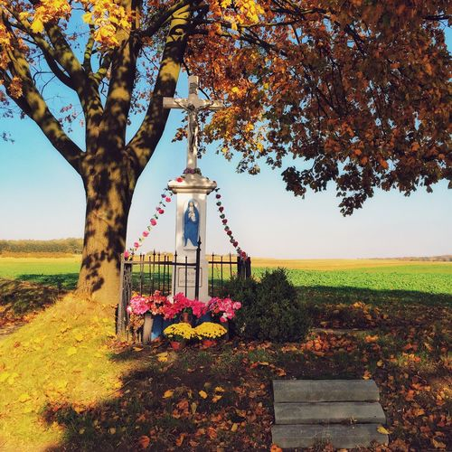 Autumn Colors Of Autumn Sacral Sacral Place Countryside Village Trees Leaves Fall Fields IPS2015Fall