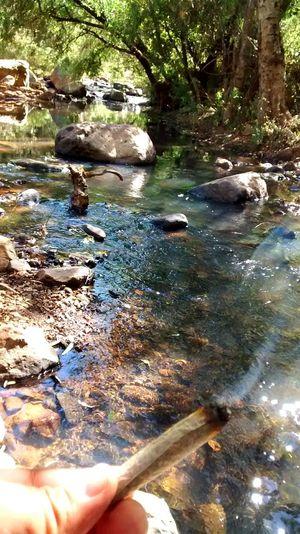 Stonerdays Relaxing Nature High Life ??