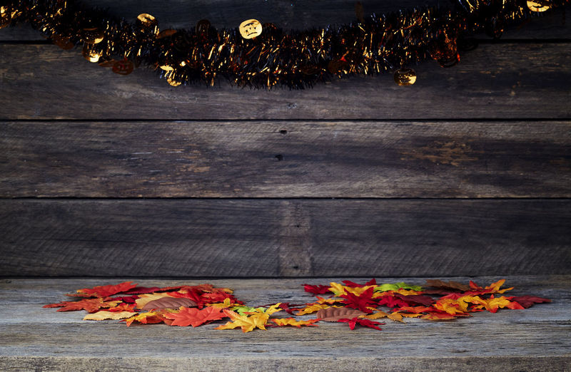 Autumnal Wood background - wooden floor with wooden wall table with free space for an advertising product Background Wood Wooden Autumn Floor Fall Leaves Table Texture Board Yellow Natural Nature Old Plank Season  Wall Forest Brown Space Pattern Rustic Tree Textured  Desk Abstract Red Foliage Maple Empty Backdrop Decoration Frame Grunge Hardwood Thanksgiving Orange Dark Copy Vintage Flower Plant Flowering Plant Wood - Material Freshness No People Vulnerability  Fragility Plant Part Beauty In Nature Close-up Outdoors Leaf Day Petal Orange Color Flower Head
