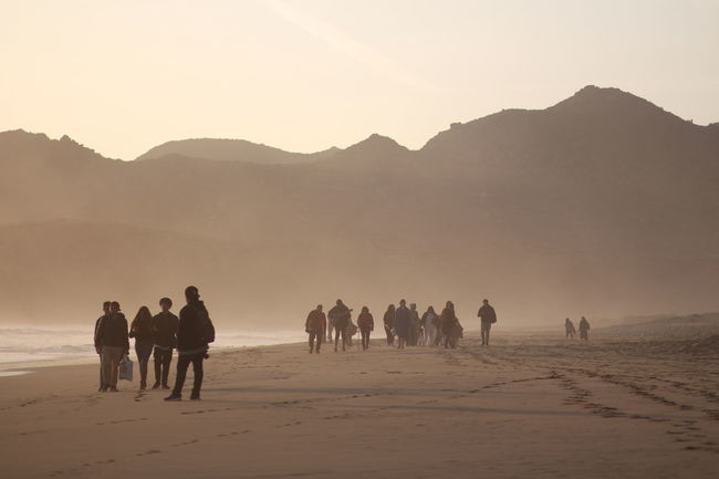 Walking out Sand Dune Full Length Desert Arid Climate Sunset Mountain Adventure Sand Silhouette Heat - Temperature Dust Arid Landscape Group Of Animals Floating In Water Mountain Range