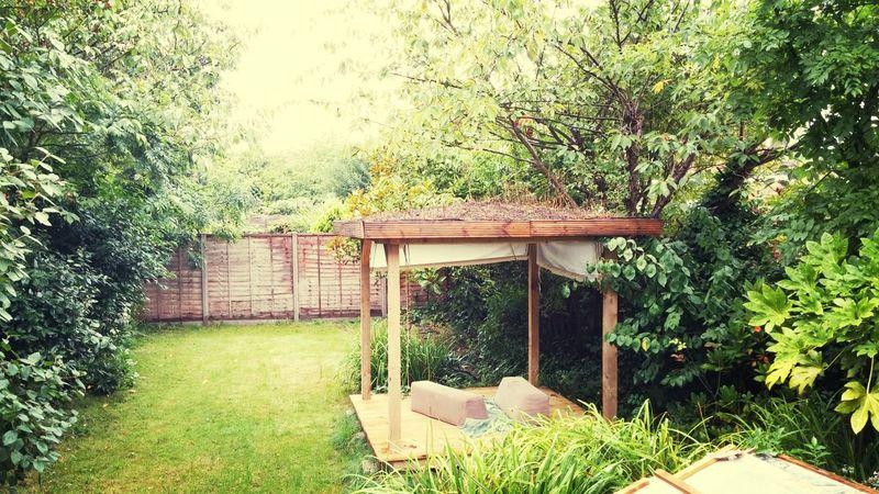 My tea pavilion
