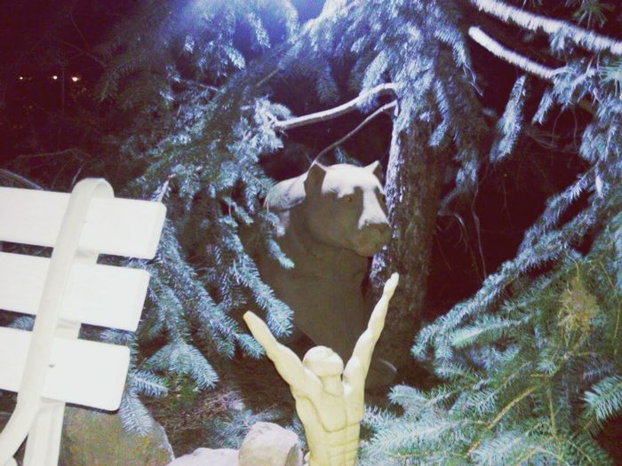Forest Photography Mountain Lion Male Body Odd Adventures Statuette