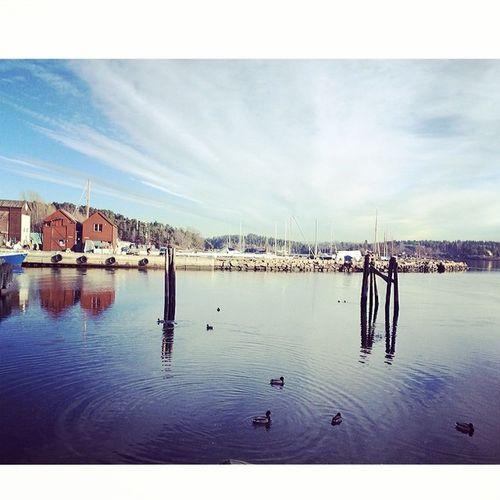 Oslogram Oslo Seemyoslo