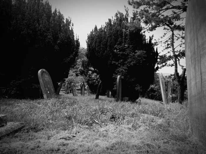 Hanging Out Check This Out Graveyard Beauty Tombstones EyeEm Best Shots Church