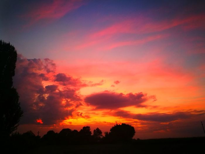 Sky Sunset Cloud - Sky Scenics - Nature Beauty In Nature Tranquil Scene Tree Tranquility Silhouette Orange Color Plant Landscape Nature No People Environment Outdoors Land Idyllic Non-urban Scene Field Romantic Sky