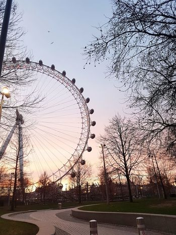 Park London Ferris Wheel Sunset No People Sky Outdoors Bird Flying
