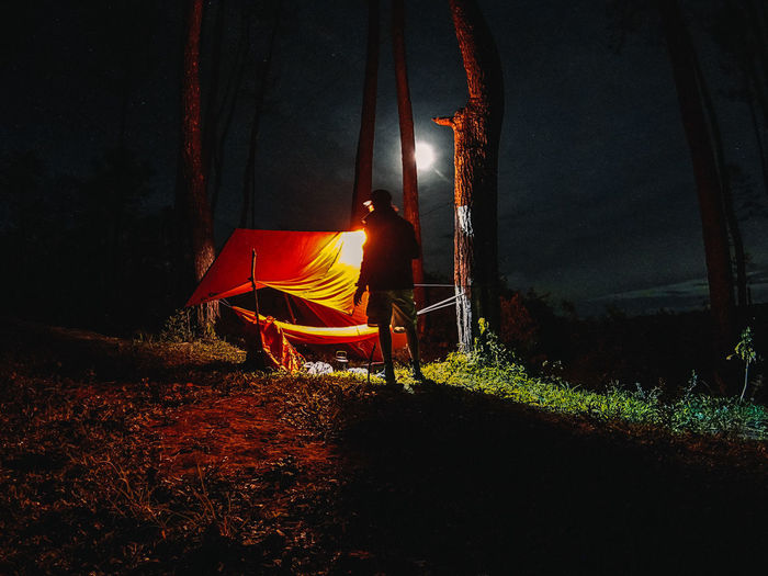 Rear view of man sitting on field at night