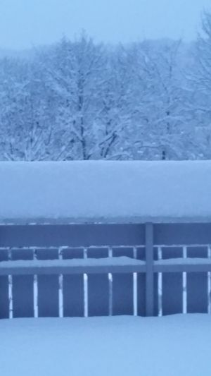 Almost to much snow
