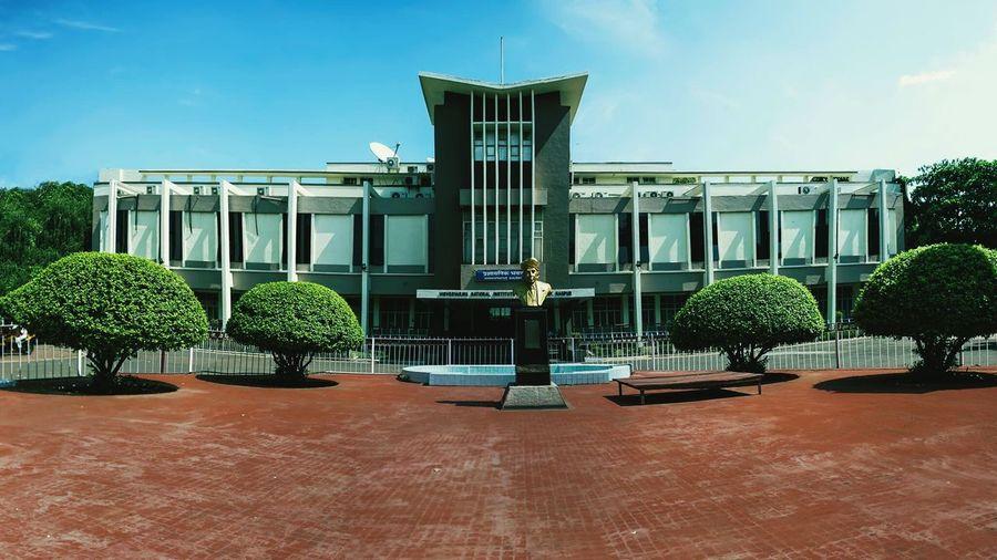 My beautiful college