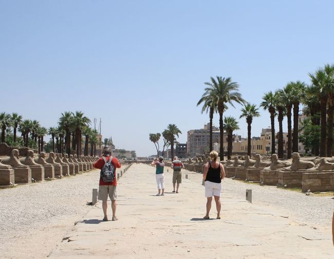 Rear view tourists traveling at temple of luxor