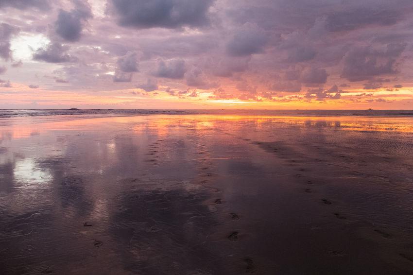 Costa Rica Mirror Nature Orange Red Beach Beauty In Nature Jungle Ocean Sky Sunset Wildlife