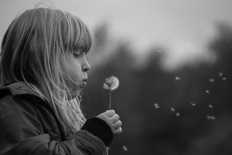Close-up of cute girl blowing dandelion