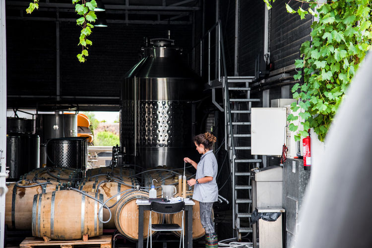 Vineyards  Wine Tasting Barrel Brewery Distillation Drink Expertise Factory Food And Drink Food And Drink Industry Freshness Indoors  Occupation One Person People Preparation  Real People Standing Uniform Vineyard Wine Wine Preparation Winery Working Yeast