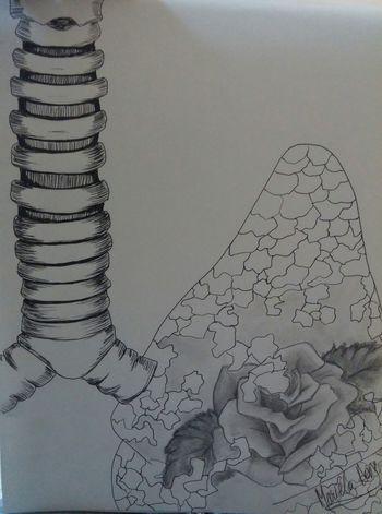 Drawing My Draw Creative Art, Drawing, Creativity