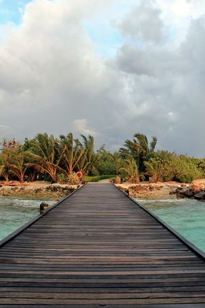 Gateway to peace EyeEmNewHere Wooden Wooden Bridge Breeze Wind Sea Ocean Blue Sun Set Summers Blue Nature Sea And Sky Summer Sky And Clouds Parks Garden Tree Cloud - Sky Vacations Water Outdoors Palm Tree Landscape Nature Travel Destinations Tranquility Lake Beach Scenics Beauty In Nature