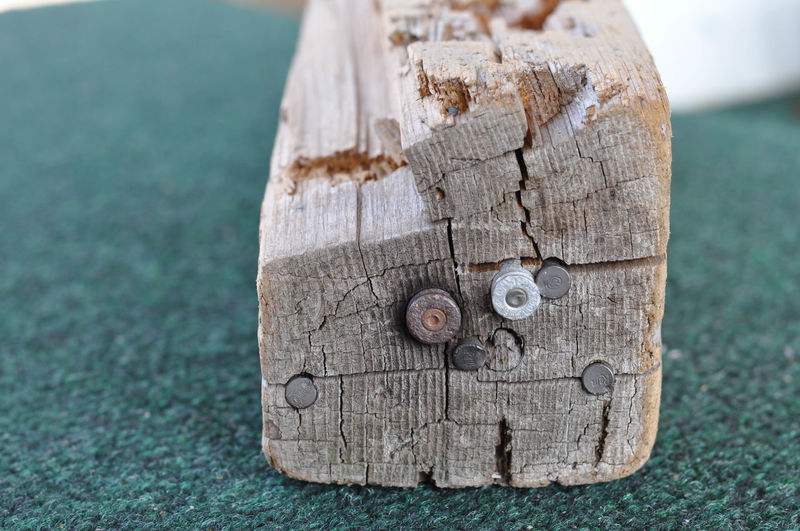 Piece of Wood with Embedded Bullets Ammo Ammunition Bullets Close-up Nature No People Outdoors Tree Stump Wood - Material