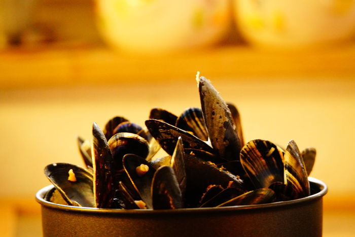 Lunch Time First Eyeem Photo Freshness EyeEm Close-up No People Food Indoors  Taking Photos Shells Moules Yellow Healthy Eating Sony A 99 II Kitchen Life Still Life Studio Shot