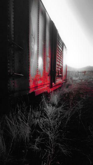 Abandoned Forgotten Freightcar Locomotive