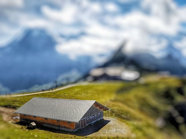 Mountain Outdoors Nature Landscape Tilt Shift Tiltshift Tilt-shift Tiltshiftphotography Männlichen Wengen Switzerland Wengen Grindelwald, Switzerland Grindelwald GalaxyS7Edge Snapseed Been There. Perspectives On Nature