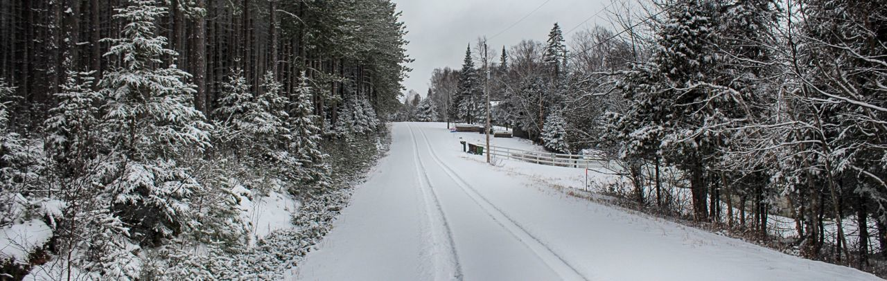 Tire Tracks On Snow Covered Pathway Amidst Trees