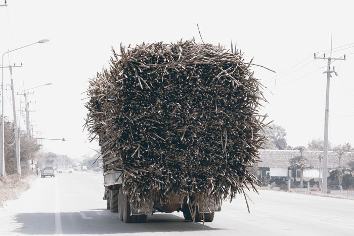 Cane carriage on the highway to the factory. Carrying Conveyor Belt Thailand Transportation Cane Countryside Factory Freight Transportation Highway Loading Manufacturing No People Outdoors Road Street Sugarcane Truck