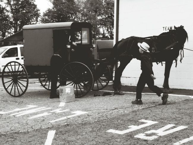 Lancastercounty Blackandwhite Photography EyeEm Best Shots Eye4black&white  Amishcountry Horse Horse And Buggy Ride Taking Photos Captured Moment Amish Buggy
