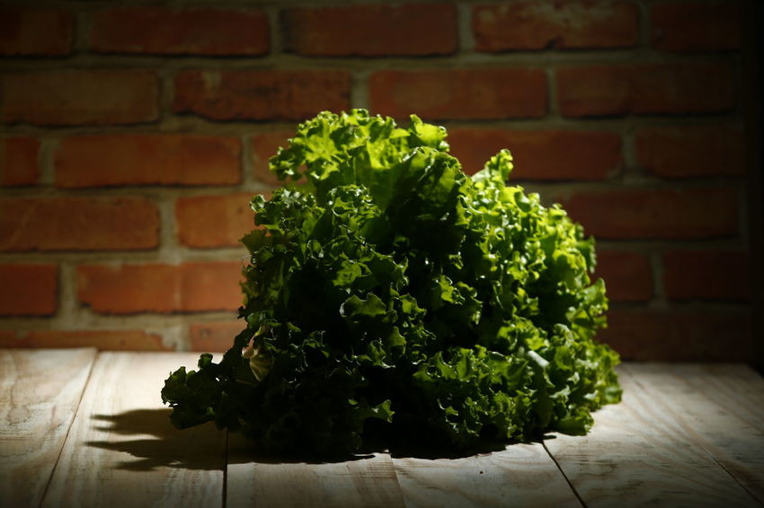 alface lettuce Vegetarian Food Raw Food Still Life Alface Crespa Alface Day Leaf Plant Part Nature Close-up Freshness Table No People Food And Drink Food Plant Healthy Eating Vegetable Wall - Building Feature Wellbeing Wall Brick Wall Brick Green Color Lettuce