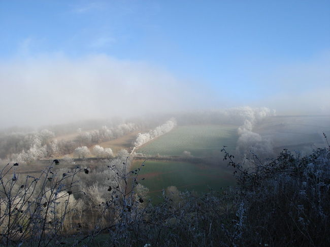 Brume Campagne Champs Hanging Out Landscape Paysage Winter