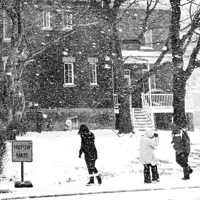 Storm (null)Winter Snow Cold Temperature Snowing Weather Warm Clothing Week On Eyeem Blackandwhite Streetphoto_bw