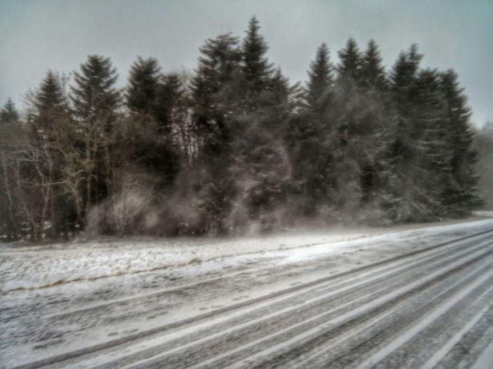 Kloster Kreuzberg Winter Wonderland Winter Snow ❄