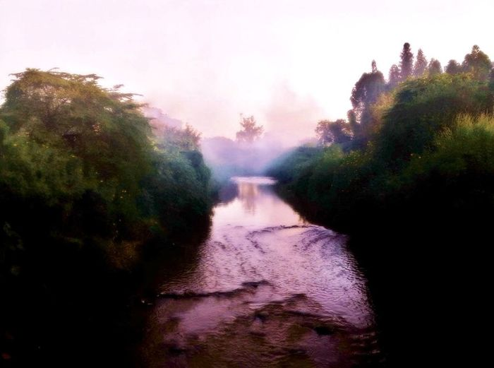 River Popular Photos Water Water_collection Waterscape Landscape Melancolia Mist Trees