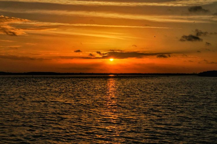 Sunrise Tampa, Florida Tampa Florida Water Beach Canon Canonphotography Sigma Silhouette Sunny Travel Tourism Sun Vacations Sea Canon 70d Orange Color Reflection Nature Tranquility Beauty In Nature Outdoors Vacations Photography