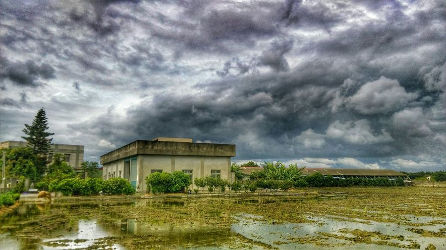 Taking Photos Check This Out Rice Field Old Buildings Enjoying Life Country Life Sky_collection Enjoying Nature Enjoying The View Sky And Clouds