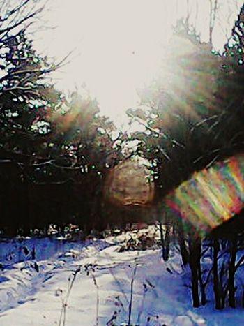 зима на курорте Шмаковка
