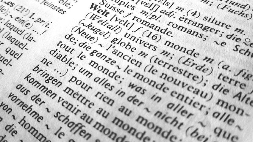 Welt Monde World Dictionary Words ❤