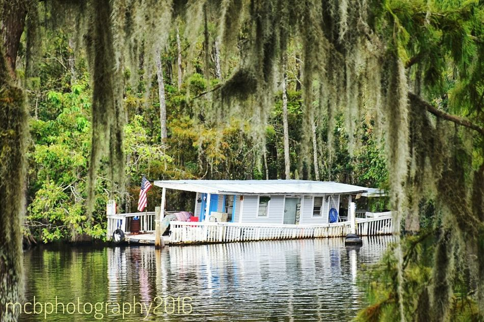 House boat... Tree Water Built Structure Waterfront Tranquil Scene River Riverbank Scenics Nature Day Seen Better Days Non-urban Scene South Louisiana Reflection Nature