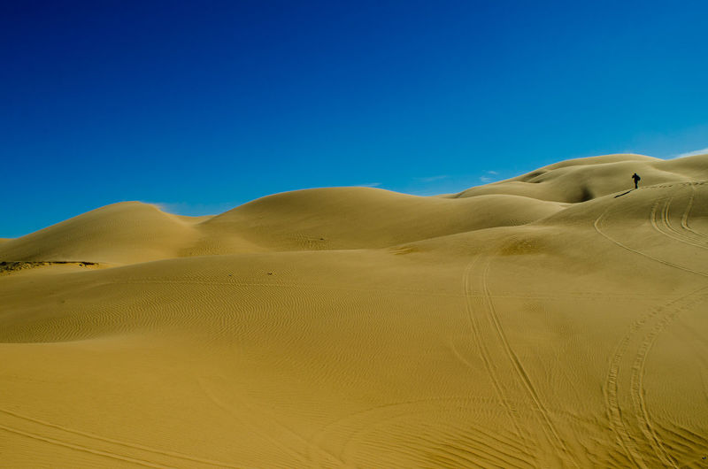 Arid Climate Beauty In Nature Blue Clear Sky Day Desert Environment Landscape Nature Outdoors Physical Geography Sand Sand Dune Scenics Sky Sunlight