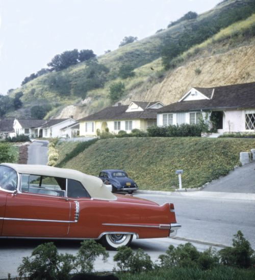 Hollywood In The 1950s Hollywood Vintage Cars Old Automobile Automotive Car Street Residential Building Mode Of Transportation Transportation Architecture Motor Vehicle Built Structure Building Exterior Plant