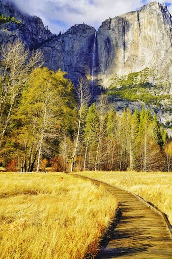 My USA Journey. All ready to hike to the top Ribbon Falls in Yosemite. Stay Out Waterfall USA California Yosemite National Park Hike vanishing point Tree Nature Trail Sony EyeEm Best Shots EyeEm Nature Lover Vacations EyeEm Gallery EyeEm Selects EyeEm EyeEmBestPics Eyeemphotography Scenics - Nature Travel Travel Destinations Sky And Clouds Mountain Tree Sunlight Sky Landscape Tranquil Scene Scenics Calm Mountain Range Remote Snowcapped Mountain Rocky Mountains Tranquility Idyllic