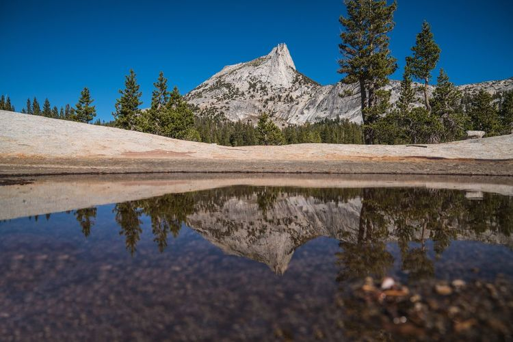 Cathedral Peak Cathedral Lake Reflection Tree Water Nature Yosemite National Park Yosemite California California Love Hiking Scenics Beauty In Nature Clear Sky Landscape Idyllic Outdoors Tranquility Sky Mountain