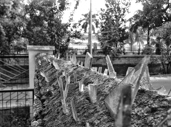 Blackandwhite Nature Fence Broken Glass Home Fine Art Photography